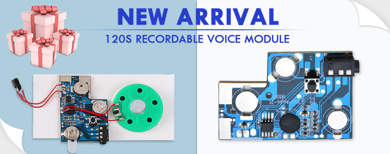 13420_Recordable Voice Module