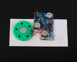 120S Recordable Voice Module Greeting Card Music Sound Player